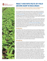 Insect and mite pests of field grown hemp in Wisconsin