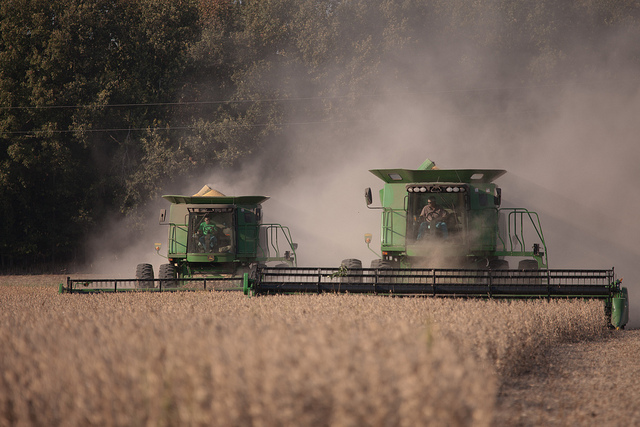 Photo Credit:  Soybean Harvest by United Soybean Board Attribution-NonCommercial License