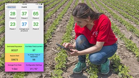 User in field.