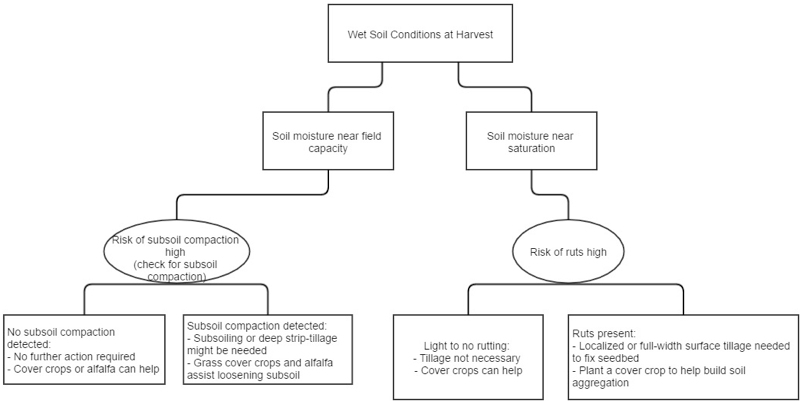 Figure 2. Decision diagram to assist in determining soil compaction presence after harvest during wet field conditions.