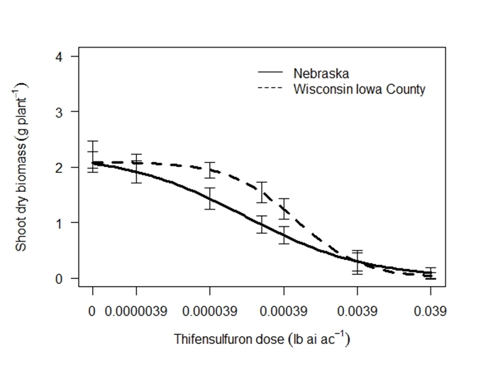 Figure 4. Response of Iowa County and Nebraska Palmer amaranth populations to thifensulfuron (Harmony SG) 28 days after treatment. The labelled rate (1X) is 0.0039 lb ai ac-1.