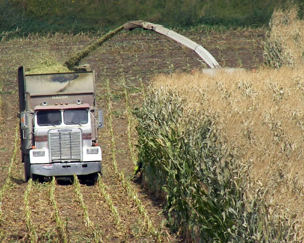 picture of farm truck