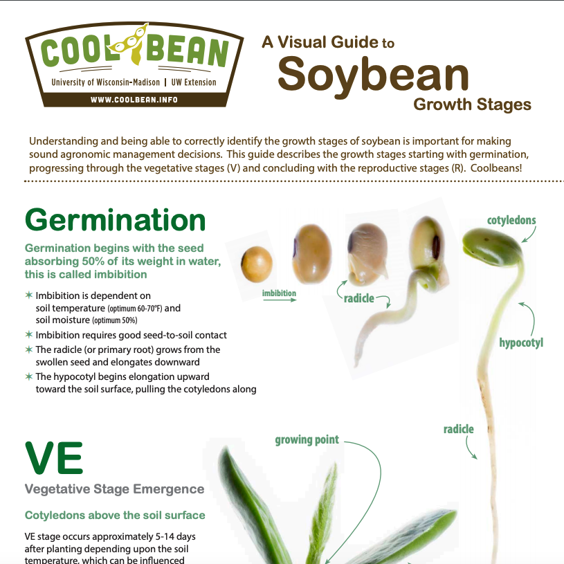 Soybean Guide Cover Page